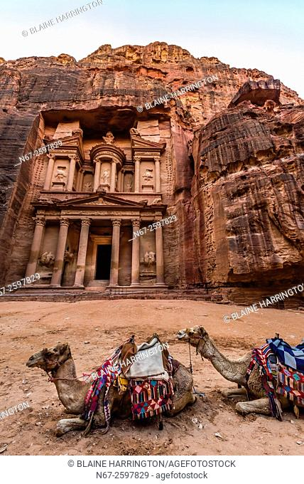 Camels in front of The Treasury (Al-Khazneh), Petra Archaeological Park (a UNESCO World Heritage Site), Petra, Jordan