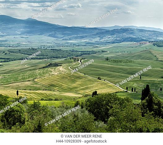 Pienza, Italy, Europe, Tuscany, Toscana, scenery, agriculture, green hill, fields