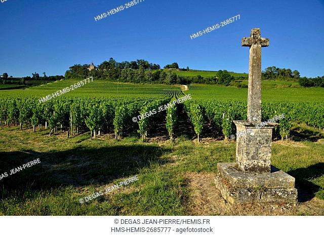 France, Gironde, Saint Etienne de Lisse, Chateau de Pressac classifiedGrand Cru, landscape of the Saint Emilion vineyards listed as World Heritage by UNESCO