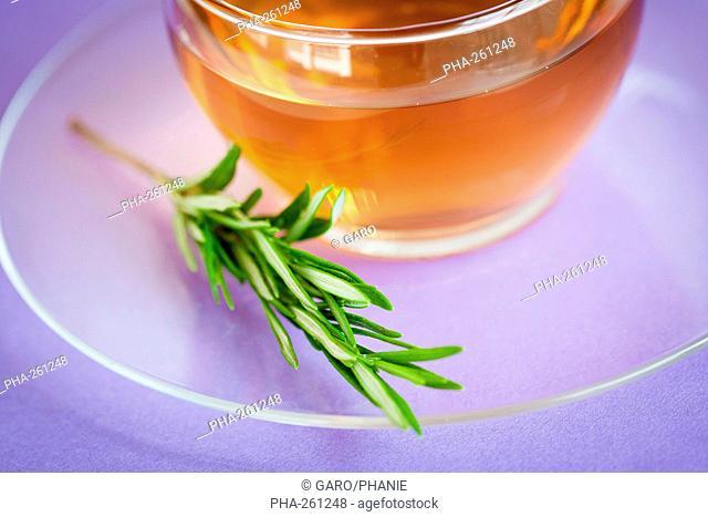 Rosmary herbal tea