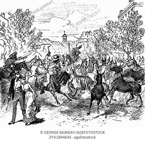 1879: A stampede of mules in Augusta, Georgia, United States of America