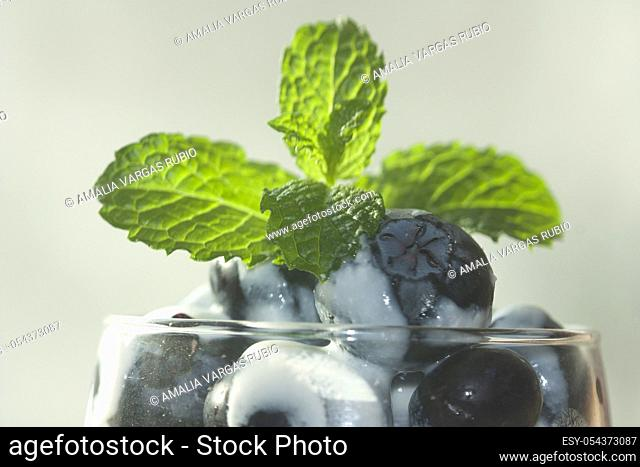 Jumbo blueberries dipped in unsweetened natural yogurt garnished with fresh mint leaves