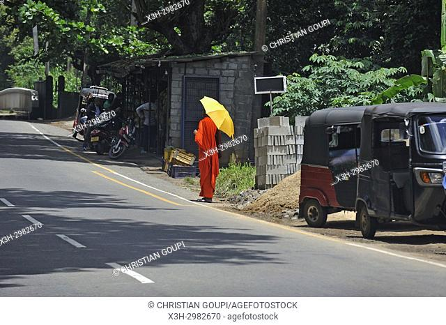 mountain city in the center of the island, road from Hatton to Kandy, Sri Lanka, Indian subcontinent, South Asia