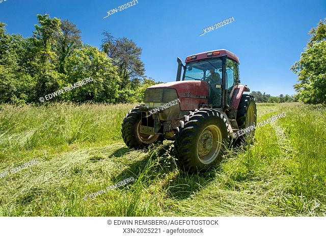 Tractor in hay field. Westernport Maryland USA