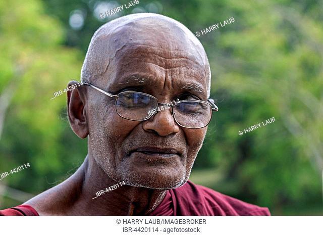 Buddhist monk, portrait, Anuradhapura, North Central Province, Sri Lanka