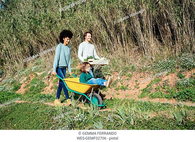 Family walking on a dirt track, pushing wheelbarrow, carrying crate with vegetables