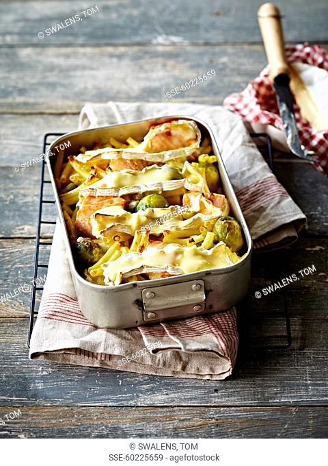 Macaronis, Camembert,Brussels sprout and salmon gratin