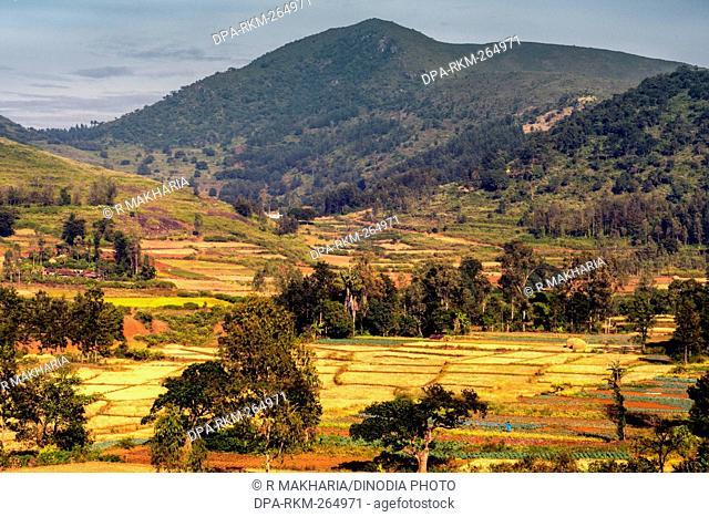 Landscape, Araku, Andhra pradesh, India, Asia