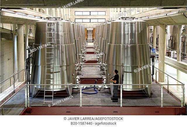 Fermentation tanks, Winery Building Architect Iñaki Aspiazu, Bodegas Baigorri, Samaniego, Araba, Rioja Alavesa, Basque Country, Spain