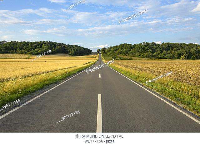 Country road with grain fields in summer, Sternberg, Grabfeld, Bavaria, Germany