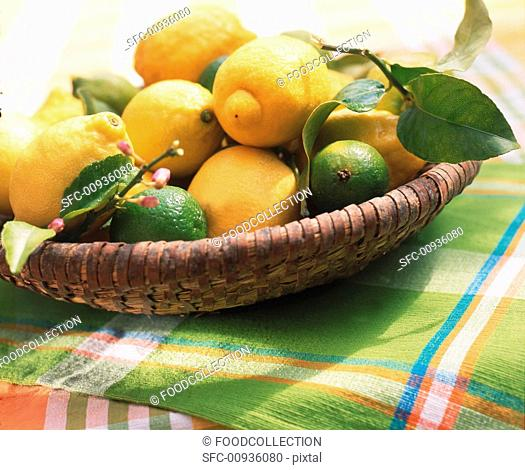 Lemons and limes in basket