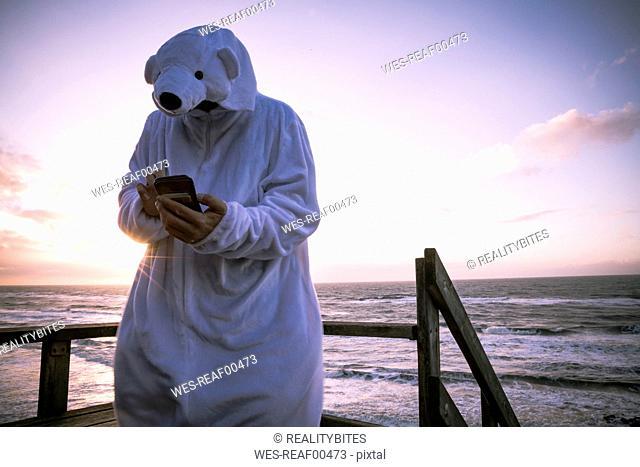 Denmark, Nordjuetland, Man wearing ice bear costume at the beach, using smartphone