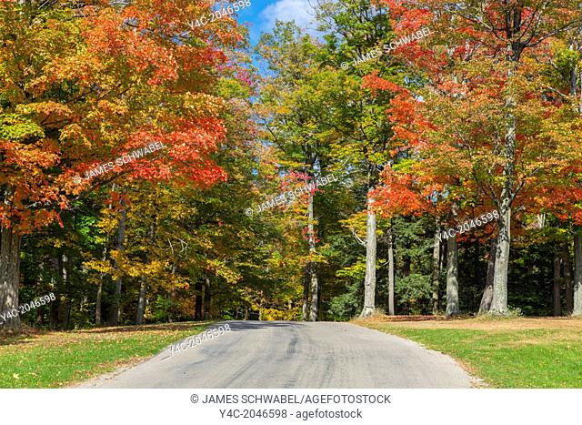 Road ruinning though fall color in trees in Chestnut Ridge Park part of the Erie County Parks system in Orchard Park Western New York United States