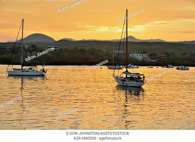 Dawn skies and moored pleasurecraft in Wreck Bay, Puerto Baquerizo Moreno, San Cristobal Island, Ecuador