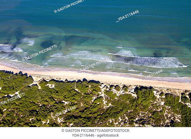 Aerial view of Alcudia Beach, Alcudia Bay, Mallorca, Balearic Island, Spain