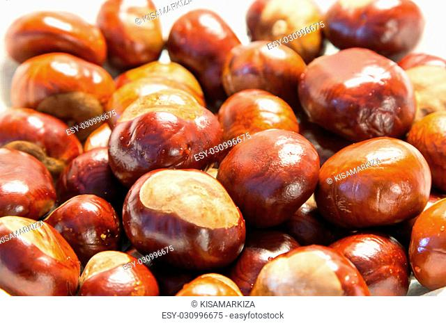 the background of the Chestnuts close up shoot