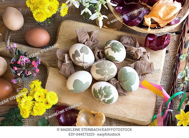 Preparation of Easter eggs for dying with onion peels: eggs with a pattern of fresh herbs, onion peels, coltsfoot, lungwort