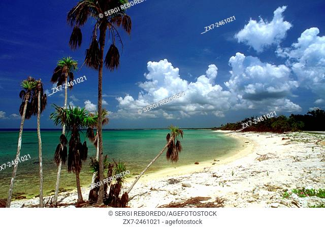 White sand in Maria la Gorda beach. Seaside resort of Maria La Gorda in the Pinar del Rio province of Cuba, West Indies