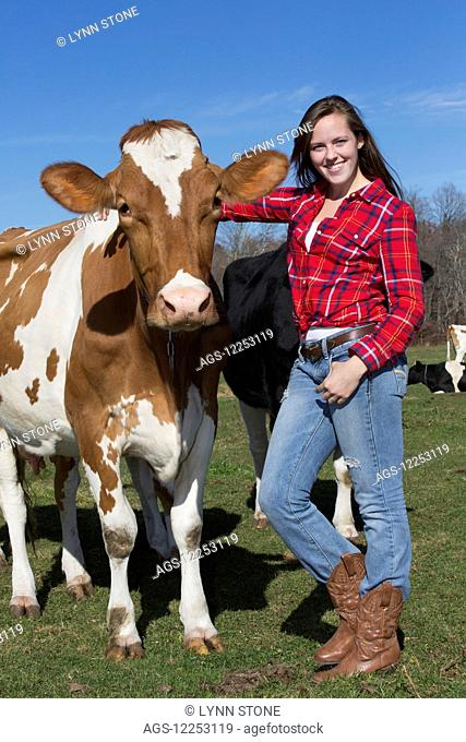A young woman with Guernsey heifer; Granby, Connecticut, United States of America
