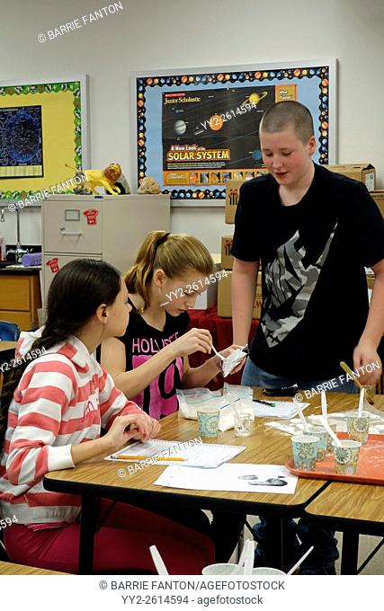 Students Studying Chemical Reaction of Various Powders to Liquids, Wellsville, New York, United States