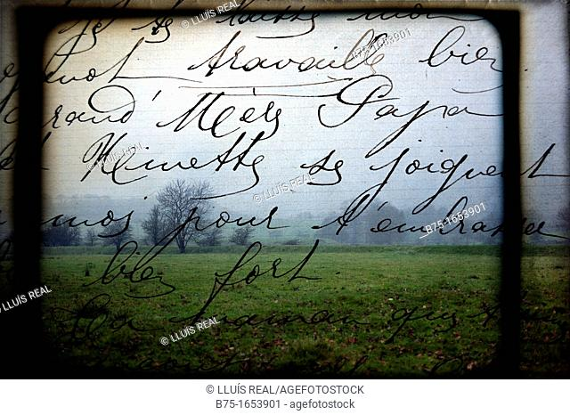 escrito a mano sobre fondo de Paisaje con arboles en North Yorkshire, Yorkshire, England, UK, handwritten on landscape background with trees in North Yorkshire