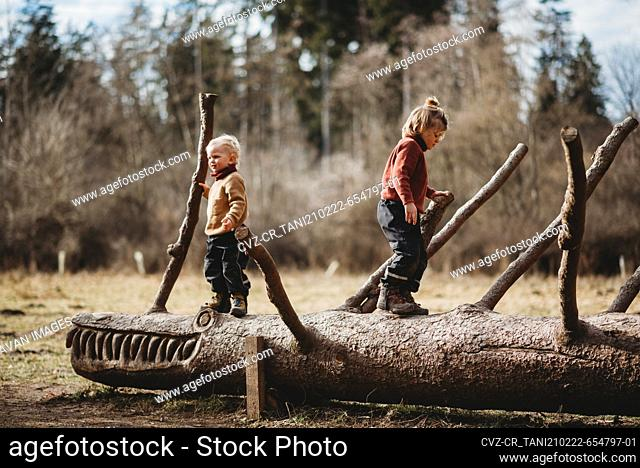 Brothers walking on a sculpted log in the forest on a sunny winter day