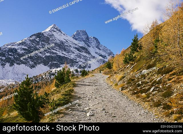 Autumn in the mountains, path that leads to Val Viola, Valdidentro, Alta Valtellina, Lombardy, Italy