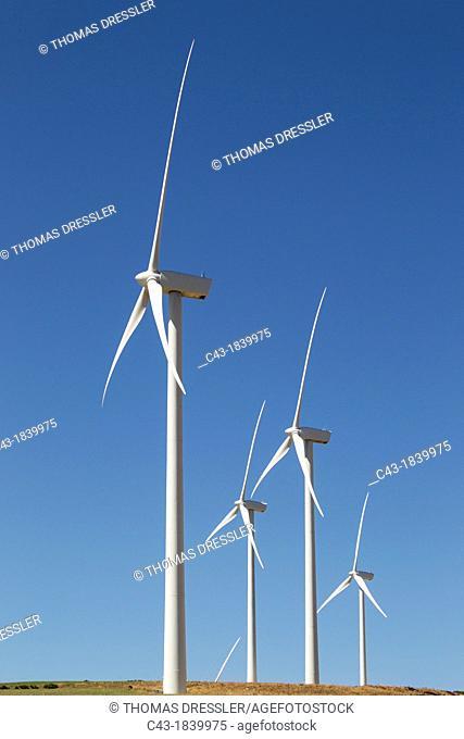 Windmills on a wind farm near Zahara de los Atunes  Cádiz province, Andalucía, Spain