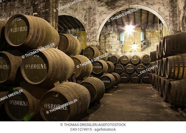 Spain - Stacked oak barrels in one of the cellars at the Bodega Osborne in the town of El Puerto de Santa María  Cádiz province, Andalucía, Spain