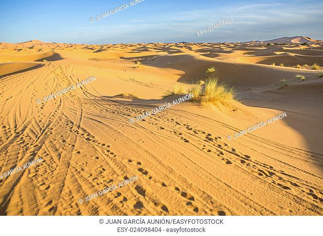 Several sand hill at Erg Chebbi in the Sahara desert. Ers are large dunes formed by wind-blown sand. Morocco