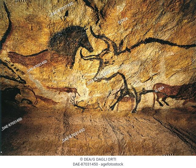 Prehistory, France, Upper Paleolithic, Perigordian - Reconstruction of the rock paintings of Lascaux caves - Bulls  Saint Germain-En-Laye