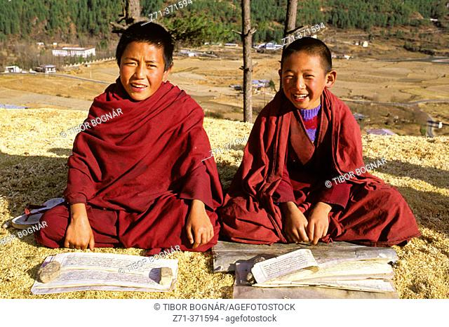Young Buddhist monks studying the scriptures. Thimpu. Bhutan
