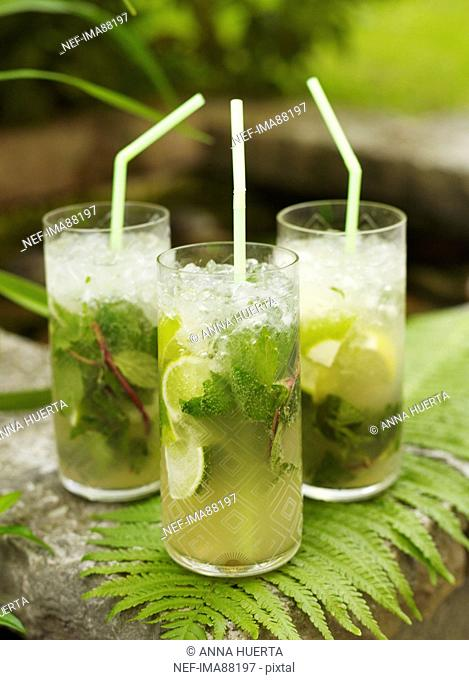 Three mojito cocktails on fern