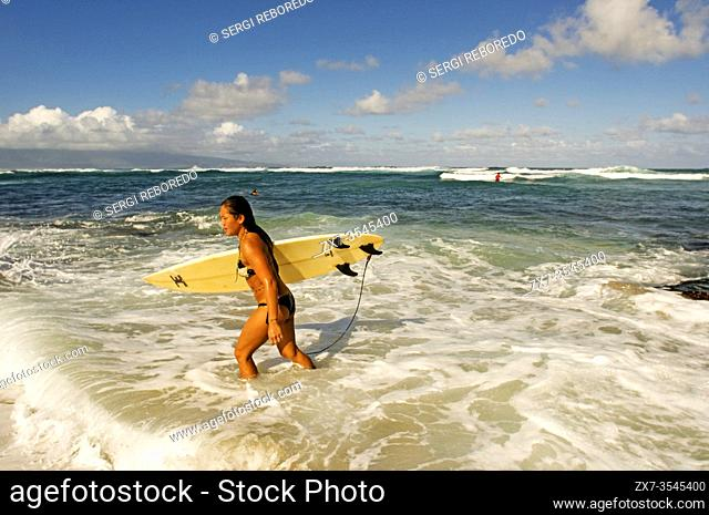Woman Surfer leaving the water. Hoâ. . okipa Beach. Maui. Hawaii. One of the worldâ. . s best windsurfing beaches, Hookipa is also a favorite hangout for...