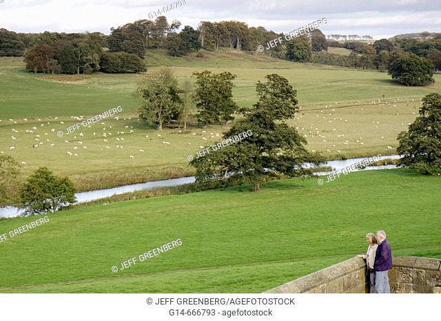 UK, England, Northumberland, Alnwick, Alnwick Castle, Harry Potter movie site, pasture, grazing sheep