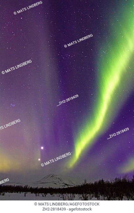 Northern light, Aurora borealis, over Nikkaluokta, mountains in background, auroa are violett, green, winter season, Kiruna, Swedish Lapland, Sweden