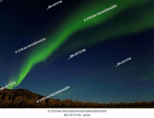 Swirling Northern lights, Polar Aurorae, Aurora Borealis, green, near Whitehorse, Yukon Territory, Canada