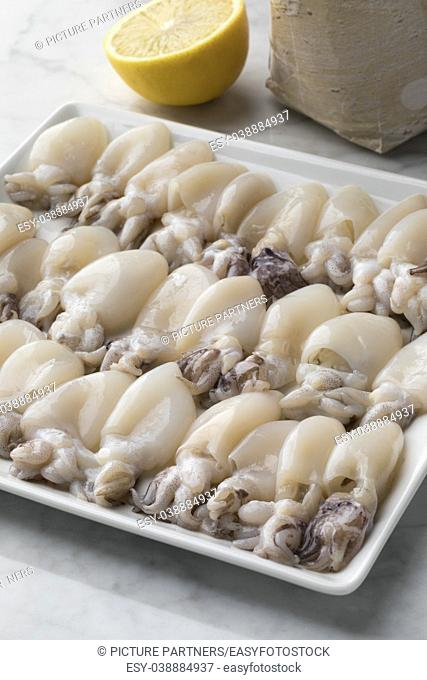 Fresh cleaned raw baby squid on a dish