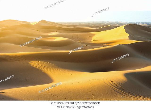 Erg Chigaga, Sahara desert, Morocco. Sand dunes at sunset