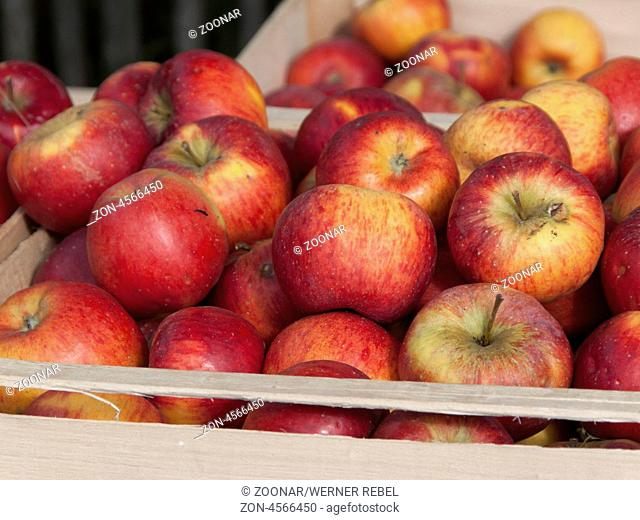 an apple a day.