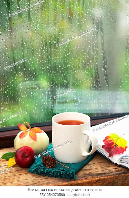 Cup Of Tea Near A Pumpkin And Book in A Rainy Day