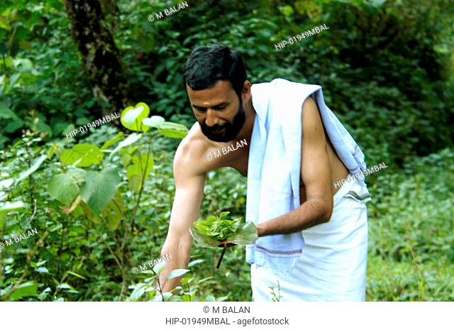 COLLECTING HERBS AND MEDICINAL PLANTS, WAYANAD