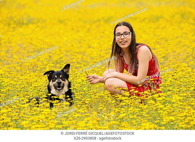 Girl with a red dress with a dog in a yellow field