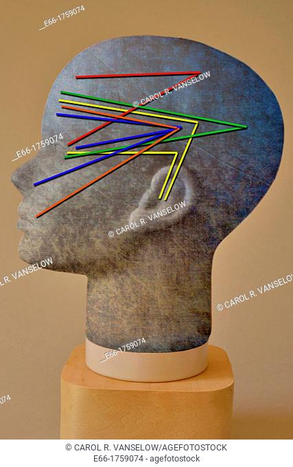 human head with grey and blue texture, showing how the senses work in the brain