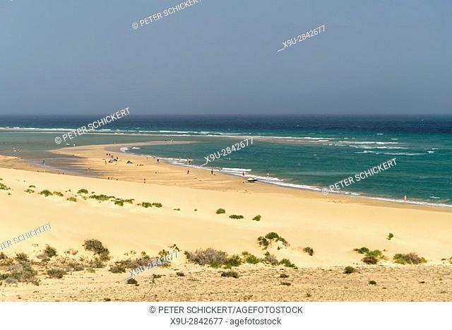 beach Playa de Sotavento, Jandía Natural Park, Fuerteventura, Canary Islands, Spain