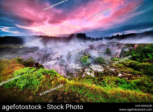 Oceania, New Zealand, Aotearoa, North Island, Taupo, Craters of the Moon, Thermal Area