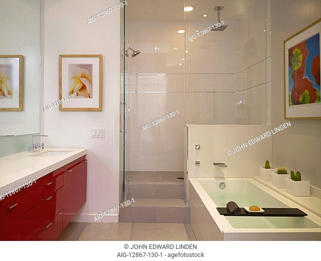 Bathroom and shower cubicle in Broadway loft apartment, Hollywood, US
