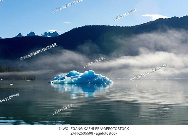 Iceberg from LeConte Glacier (named in honor of the Californian biologist Joseph LeConte) drifting in LeConte Bay, Tongass National Forest, Southeast Alaska