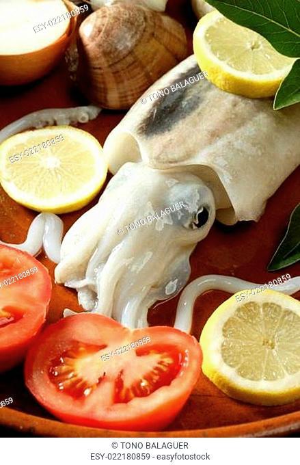 Cuttlefish uncooked, Squid Mediterranean seafood
