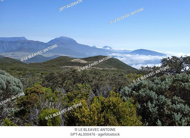 VIEW OVER THE PITON DES NEIGES (SNOW PEAK) ON THE CAFRES PLAIN, REUNION ISLAND, FRANCE, DOM-TOM